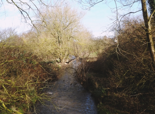 River Rea, Stirchley