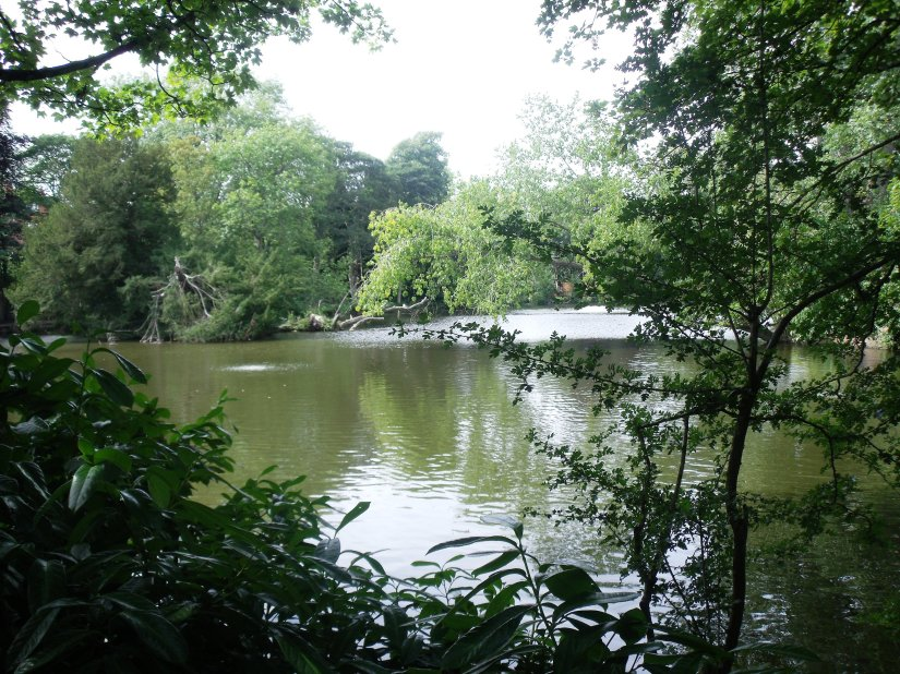 Moseley Park Pool