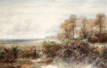 Tom Knocker's Wood, The Hilly Fields, Harborne, Birmingham , 1878